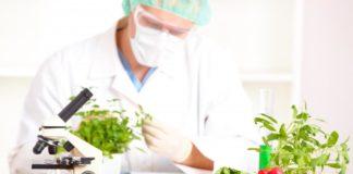 Food Tech Senior Research Fellowship/Research Associate
