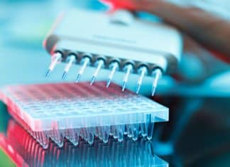 BSc Microbiology Research Jobs