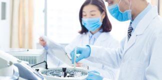 Mol Bio/Biochem/Biotech MSc Job @ Punjab Agricultural University