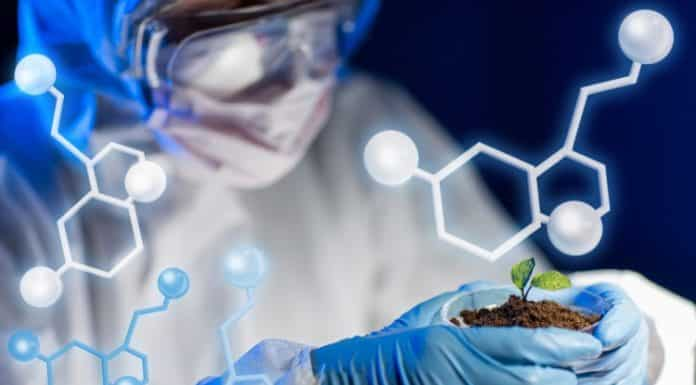 biological sciences research papers Department of biological sciences menu search an introduction to undergraduate research course in the read and analyze scientific papers and develop their.