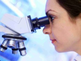 MSc Biotech Job @ KIITS