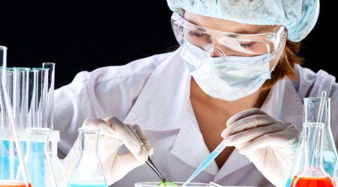bsc life sciences job