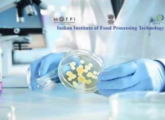Govt Job @ IIFPT - Research Positions