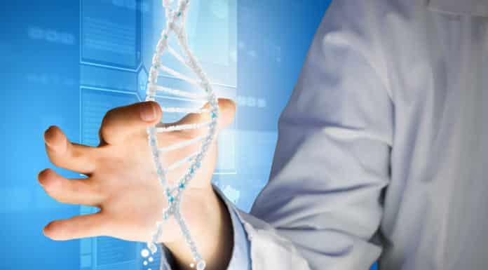 PhD Structural & Computational Biology Job