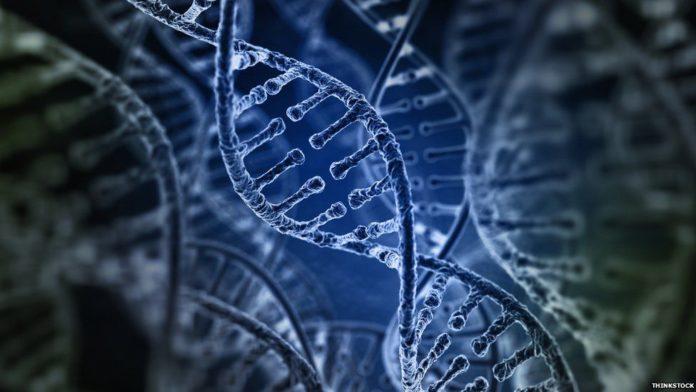 MSc Biosciences Junior & Senior Research Fellow Posts Vacant @ IARI