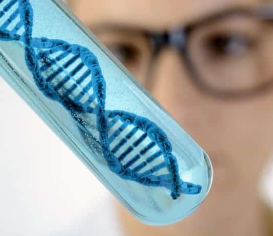 PhD Life Sciences & Biotech Research Associate Post
