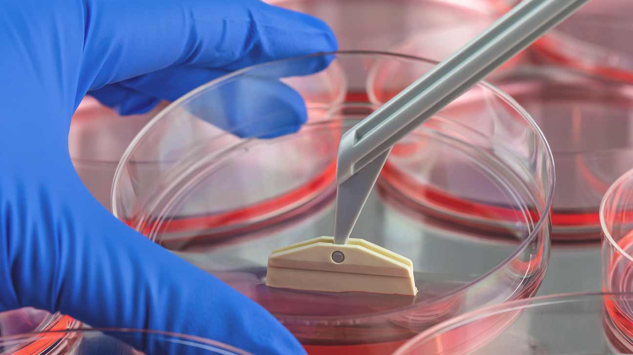 biotechnology research papers View biotechnology research papers on academiaedu for free skip biotechnology has now accelerated the breeding evolution of.