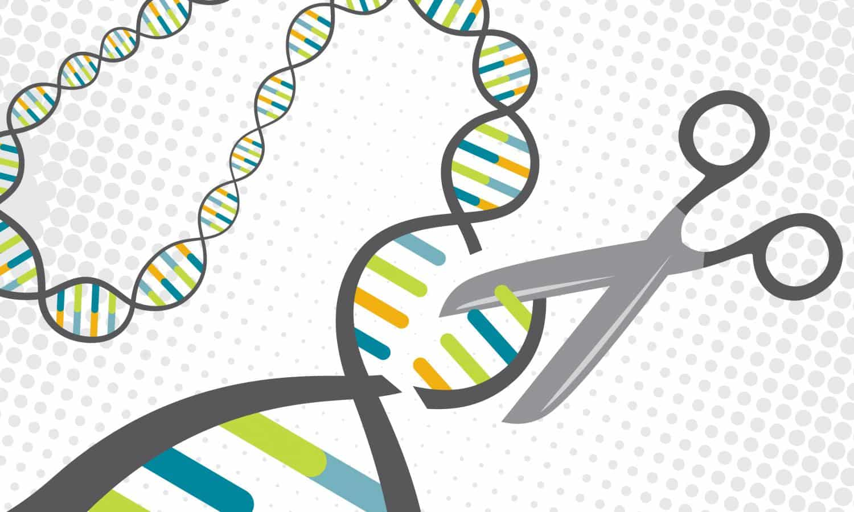 BioTherapeutics licenses New CRISPR-Cas Gene Editing Technology