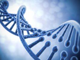Biological Sciences & Biotech Job Vacant @ Alagappa University
