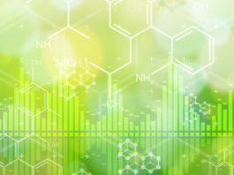PhD Research Post @ CSIR-IICB