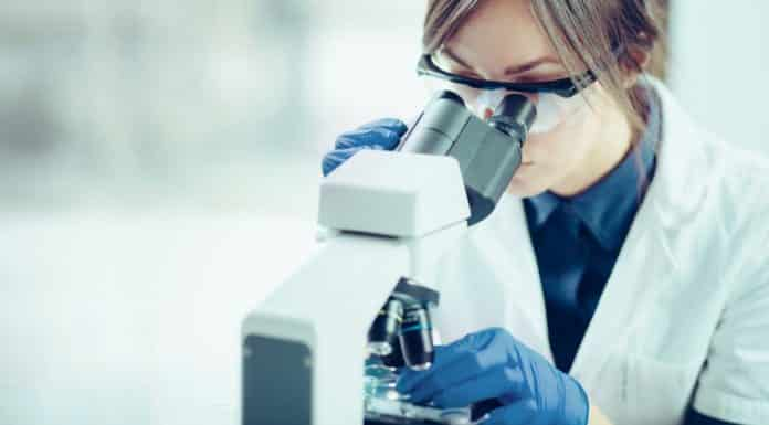 Life Sciences Job @ Indian National Science Academy