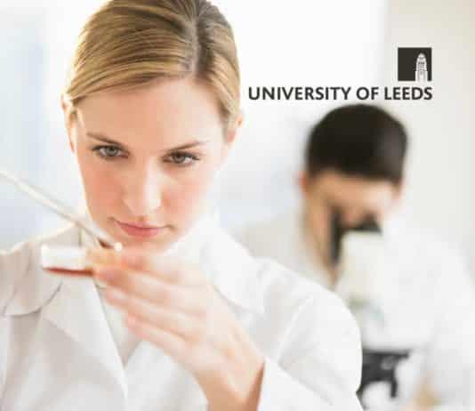Research Fellow Post @ University of Leeds