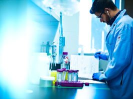 AIIMS, New Delhi Research Fellow Vacancy for MSc Candidates