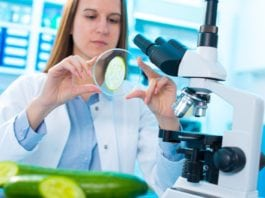 Food Technology Job Opening @ TUV SUD