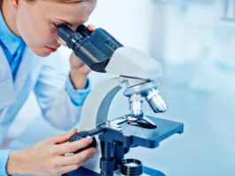 Biology & Biotechnology JRF Position Vacant @ RGCB