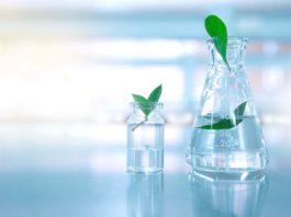 Life Sciences & Biotech Jr. Research Fellow Post @ BHU