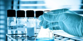 MSc & MTech Biological Sciences/Bioinformatics Job @ CUSB
