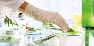 Life Sciences & Biological Sciences YP Vacancy @ NBFGR