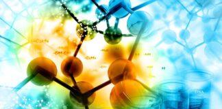 Life Sciences Project Vacancy