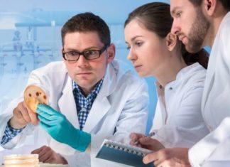 Life Sciences BSc & MSc Associate Post Vacant @ Novartis