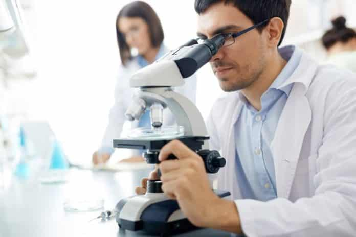 Life Sciences Project Research Assistant Position @ NBRC