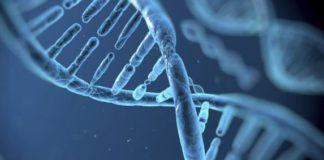 MSc Biotech/Life Sciences & Microbiology JRF @ Gauhati University
