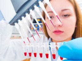 Govt BIS Scientist Recruitment