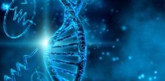 Biotech & Life Sciences Junior Research Fellow Post @ IIEST