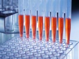 MSc & PhD Biosciences Scientist Post Vacant @ ICMR-NIRTH