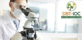 DBT IOC Bio & Life Sciences Jobs