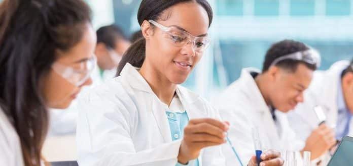 Vienna Biocenter Summer School Undergraduate Fellowships 2019
