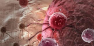 Why Some Cancer Cells Die With Treatment & Others Don't