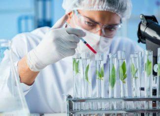 Freshers Syngene Research Jobs