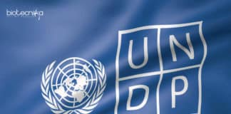 International UNDP-Delhi Project Officer Job With Rs 14 Lakhs Salary