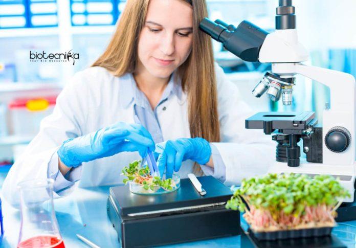 PSCST Biotechnology Agri-Food Innovation