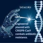 Genetically engineered plasmid with CRISPR-Cas9 to remove Antibiotic Resistance Gene