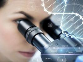SERB DNA Replication