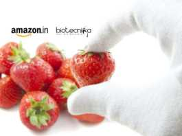 Amazon Food Safety Specialist Recruitment