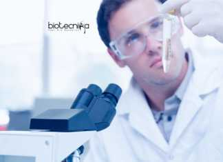 Freshers Biotechnology Project Fellow