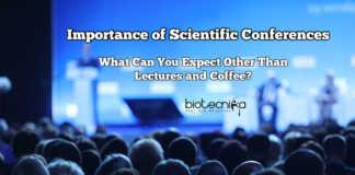 Scientific Conference Importance