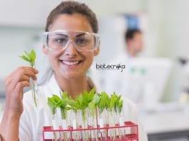 Delhi University Botany Jobs