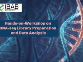 IBAB Workshop