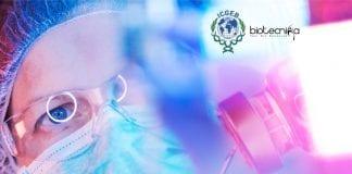 ICGEB PhD Jobs