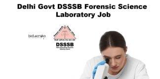 Delhi Govt DSSSB Job