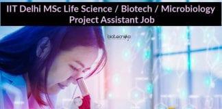 IIT Delhi Job