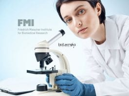FMI, Switzerland PhD Program