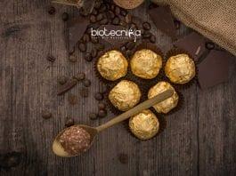 Ferrero Jobs 2020
