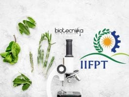 IIFPT SRF Jobs