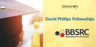 David Phillips Fellowship (DPF)