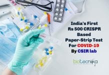 First Paper-strip Test for COVID-19